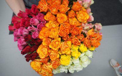 Naistenpäivän ruusuja Pirte Ratinassa